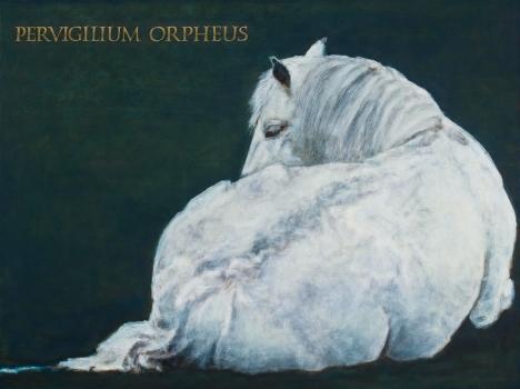 Pervigilium Orpheus